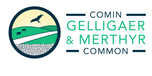 Gelligaer & Merthyr Common