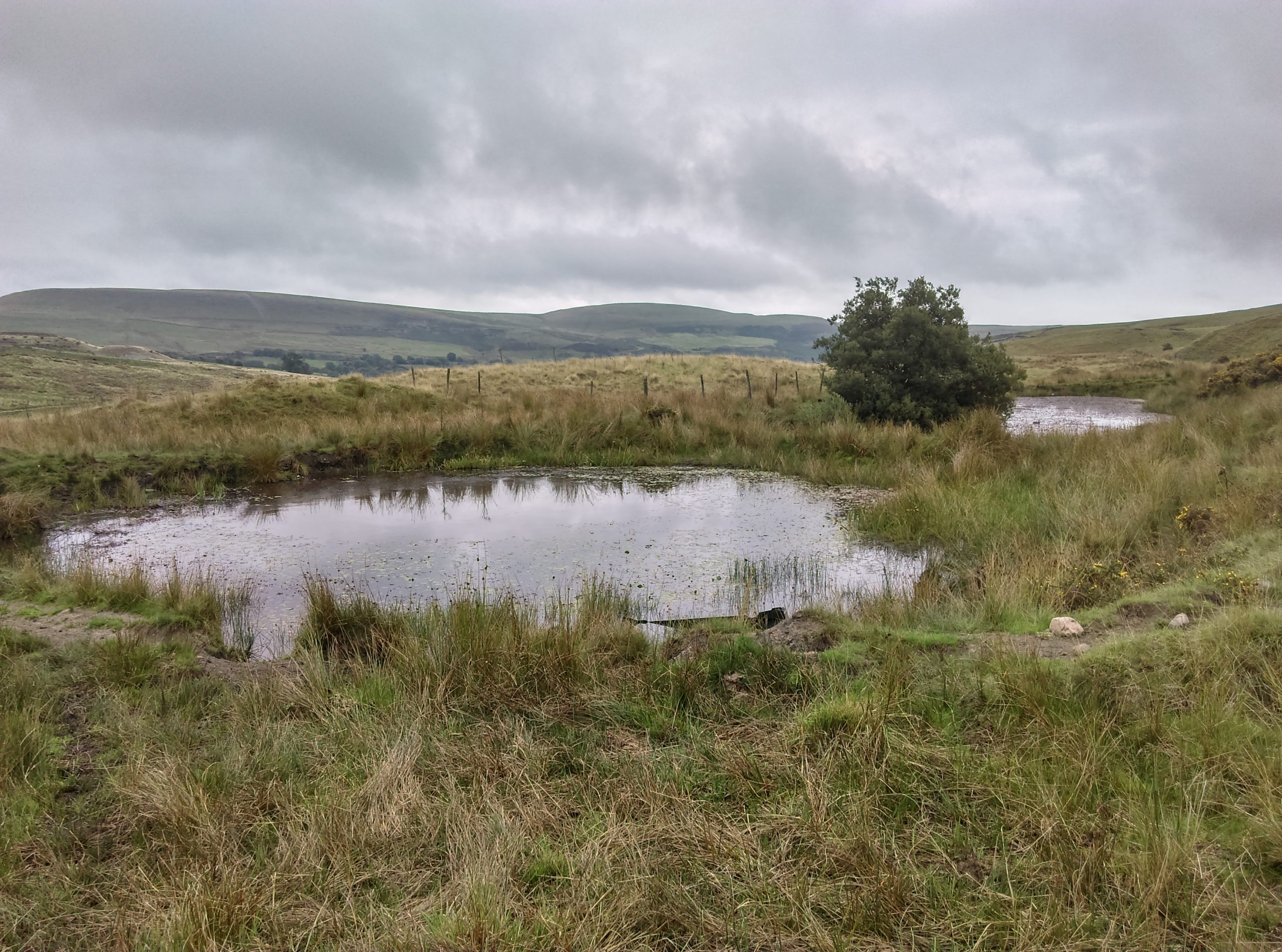 Common Land - Gelligaer and Merthyr Common